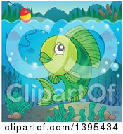 Clipart Of A Green Freshwater Fish Looking At A Hook And Bobber Royalty Free Vector Illustration by visekart