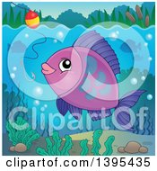 Clipart Of A Purple Freshwater Fish Looking At A Hook And Bobber Royalty Free Vector Illustration by visekart