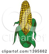 Clipart Of A Sketched Ear Of Corn Royalty Free Vector Illustration by Vector Tradition SM