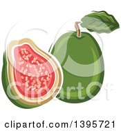 Clipart Of A Sketched Apple Guava Royalty Free Vector Illustration