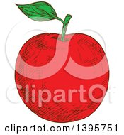Clipart Of A Sketched Red Apple Royalty Free Vector Illustration