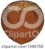 Clipart Of A Sketched Hazelnut Royalty Free Vector Illustration
