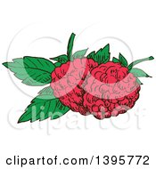 Clipart Of Sketched Raspberries Royalty Free Vector Illustration