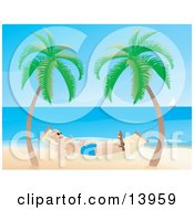 Man Relaxing In A Hammock On A Tropical Beach Clipart Illustration