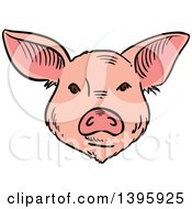 Clipart Of A Sketched Pig Face Royalty Free Vector Illustration