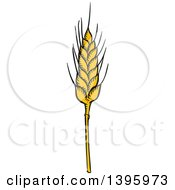 Clipart Of A Sketched Wheat Stalk Royalty Free Vector Illustration by Vector Tradition SM