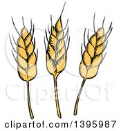 Sketched Wheat Stalks