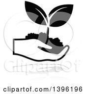 Clipart Of A Hand Holding A Black Leafy Seedling Plant With A Gray Reflection Royalty Free Vector Illustration
