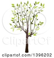 Clipart Of A Tree With Green Leaves Royalty Free Vector Illustration