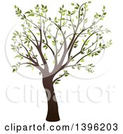 Clipart Of A Tree With Green Leaves Royalty Free Vector Illustration by dero