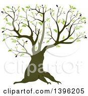 Clipart Of A Mature Olive Tree Royalty Free Vector Illustration