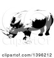 Black And White African Rhino