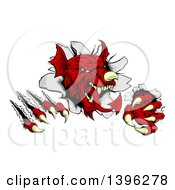 Clipart Of A Fierce Red Welsh Dragon Mascot Shredding Through A Wall Royalty Free Vector Illustration by AtStockIllustration