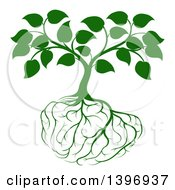 Clipart Of A Leafy Green Tree With Brain Roots Royalty Free Vector Illustration