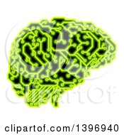 Human Brain With Electrical Circuits In Neon Green