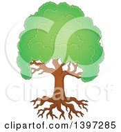 Clipart Of A Lush Tree With A Green Canopy And Visible Roots Royalty Free Vector Illustration