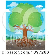 Clipart Of A Lush Tree With A Green Canopy And Visible Roots Against Sky Royalty Free Vector Illustration