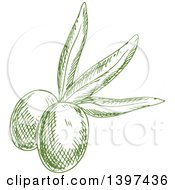 Clipart Of Green Sketched Olives Royalty Free Vector Illustration by Vector Tradition SM