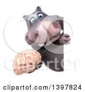 Clipart Of A 3d Henry Hippo Character Holding A Brain On A White Background Royalty Free Illustration by Julos