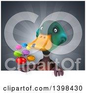 Clipart Of A 3d Mallard Drake Duck Holding Speech Balloons Royalty Free Illustration