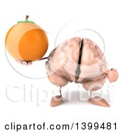 3d Brain Character Holding A Navel Orange On A White Background