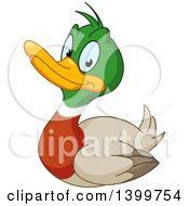 Clipart Of A Cartoon Happy Mallard Drake Duck Royalty Free Vector Illustration