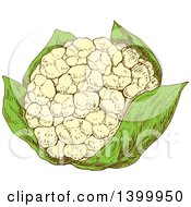 Clipart Of A Sketched Cauliflower Royalty Free Vector Illustration
