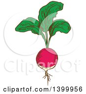 Clipart Of A Sketched Radish Royalty Free Vector Illustration
