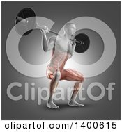 Clipart Of A 3d Anatomical Male Bodybuilder Working Out With Visible Muscles Used Doing Barbell Squats On Gray Royalty Free Illustration