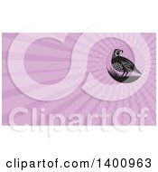 Clipart Of A Retro Black And White Quail Bird And Grass And Pink Rays Background Or Business Card Design Royalty Free Illustration by patrimonio