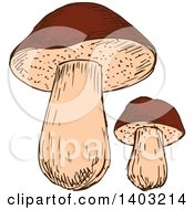 Clipart Of Sketched Mushrooms Royalty Free Vector Illustration by Vector Tradition SM