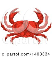 Clipart Of A Sketched Red Crab Royalty Free Vector Illustration