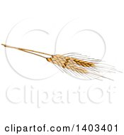 Sketched Wheat Stalk