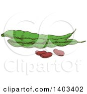 Clipart Of Sketched Beans And Pods Royalty Free Vector Illustration by Vector Tradition SM