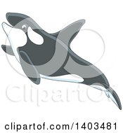 Clipart Of A Cute Killer Whale Orca Swimming Royalty Free Vector Illustration