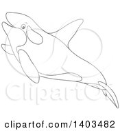 Clipart Of A Black And White Lineart Killer Whale Orca Swimming Royalty Free Vector Illustration