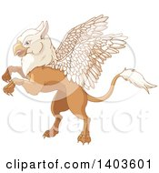 Clipart Of A Cute Griffin Mythical Creature Rearing Or Flying Royalty Free Vector Illustration