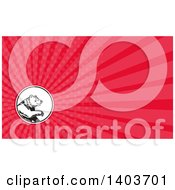 Clipart Of A Retro California Grizzly Bear And Pink Rays Background Or Business Card Design Royalty Free Illustration by patrimonio