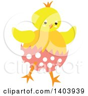 Yellow Easter Chick Hatching From A Polka Dot Egg
