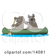 Two Dogs Paddling A Canoe And Looking Back