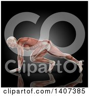 Clipart Of A 3d Anatomical Man In A Press Up Pose With Visible Muscles On Black Royalty Free Illustration