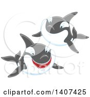 Clipart Of Killer Whale Orcas Swimming Royalty Free Vector Illustration by Alex Bannykh