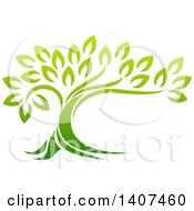 Clipart Of A Gradient Green Mature Tree With A Curving Trunk Royalty Free Vector Illustration
