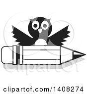 Black And White Owl Over A Pencil