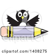 Owl Over A Pencil