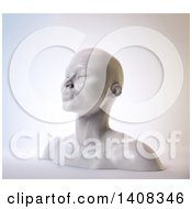 3d Femal Bust On A White Background