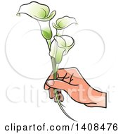 Clipart Of A Hand Holding Calla Lilies Royalty Free Vector Illustration