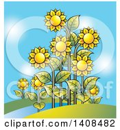 Clipart Of A Sunflower Garden And Blue Sky Royalty Free Vector Illustration by Lal Perera