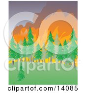 Wildfire Burning An Evergreen Forest Natural Hazard Clipart Illustration by Rasmussen Images #COLLC14085-0030