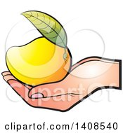 Clipart Of A Hand Holding A Ripe Mango Royalty Free Vector Illustration